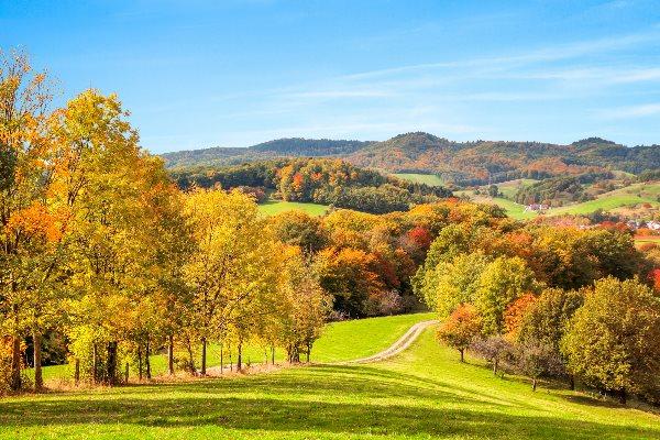 Urlaub im Odenwald