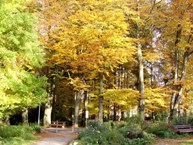 Herbst in Bad Wörishofen