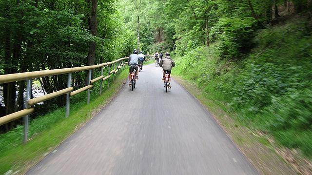 Geführte Radtour durch den Wald