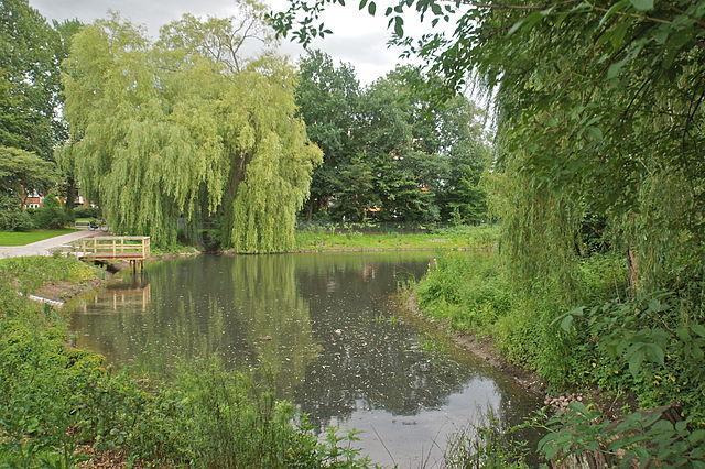 Teich auf dem Holtbarggraben, Iserbrook