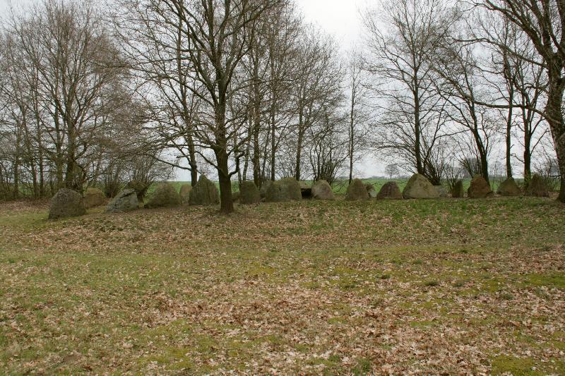 Königsgräber bei Altenmedingen