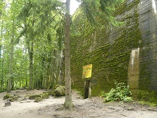Jeden z bunkrów w Wilczym Szańcu