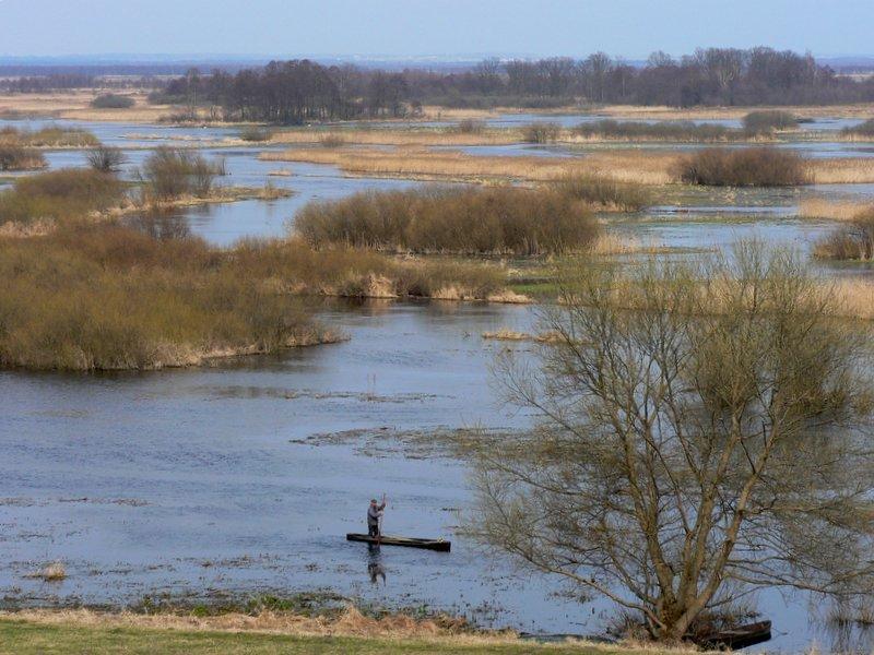 Fluß Biebrza