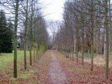Hochdorfer Garten in Tating