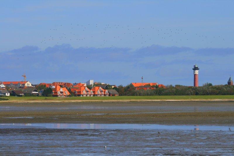 Blick ins Watt und auf Wangerooge