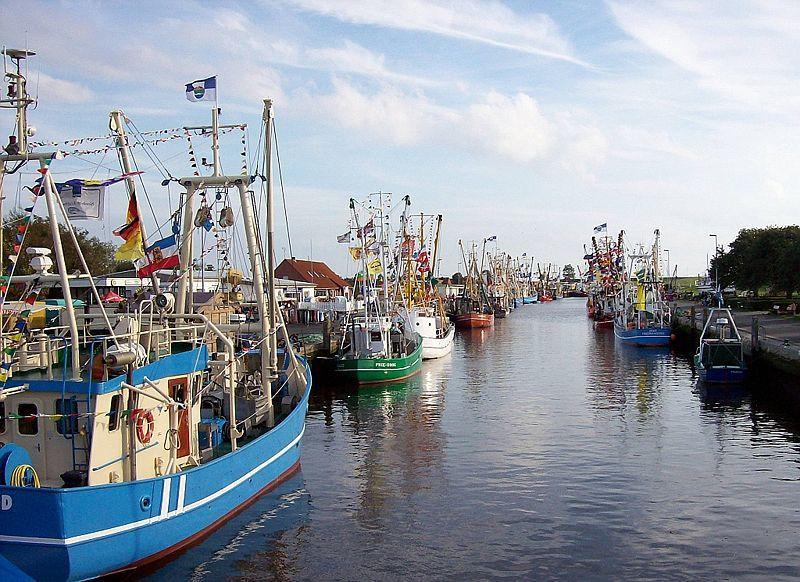 Hafen in Friedrichskoog