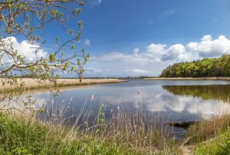 Naturschutzgebiet Geltinger Birk an der Schlei