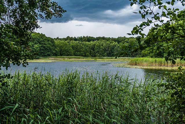 Natur pur in der Uckermark