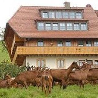 Ferienwohnung Panoramablick - Horben