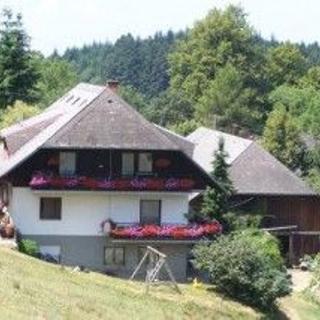 Hanspeter-Hof - Wohnung Schönbergblick - Horben