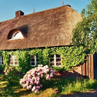 Reetdachhaus - Haus 1 - Wittdün