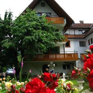 Ferienwohnung Maier -  Rose - Oberried