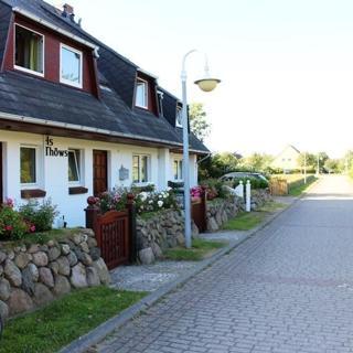 Strandiris - Wenningstedt