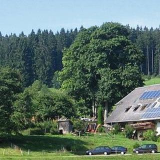 Ferienhof Gerda - Ferienwohnung Sternenhimmel - St. Georgen