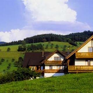 Ferienwohnung 4 auf dem Scharbachhof - Glottertal