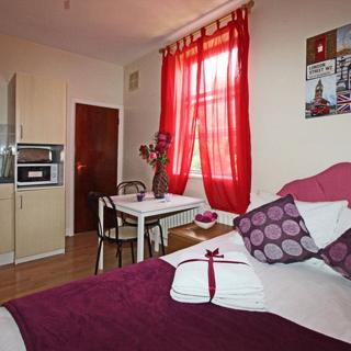 Nice studio flat for 2 people in Willesden Green area- (#ME3) - London