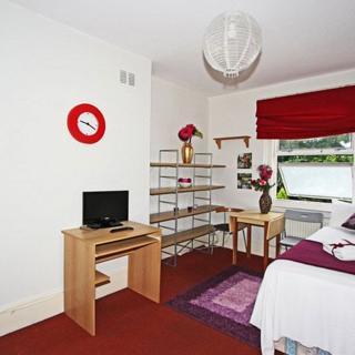 Standard studio apartment for short term rentals in Willesden Green area, London. (#P4) - London