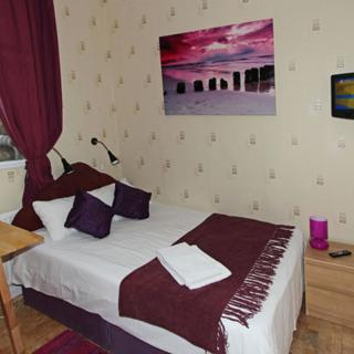 Lovely standard studio flat for 2 guests in Swiss Cottage, London (#SW1) - London