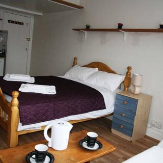 large studio apartment for holiday letting in London, Willesden Green (#Walm5) - London