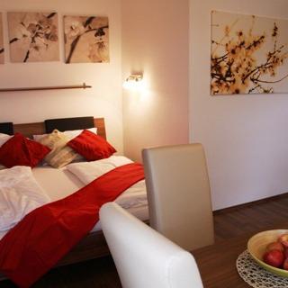 Standard Apartment - Hofwiesengasse - Wien