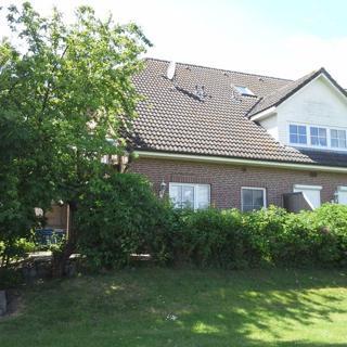 Nähe Naturstrand Bojendorf 001 - Bojendorf