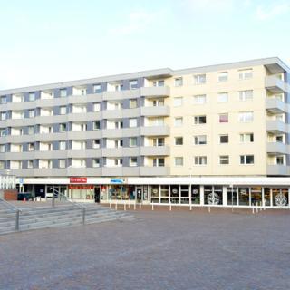 Sylter Distel - Westerland