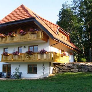 Ferienwohnung 2 Salenhof - Titisee-Neustadt