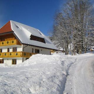 Ferienwohnung 3  Salenhof - Titisee-Neustadt