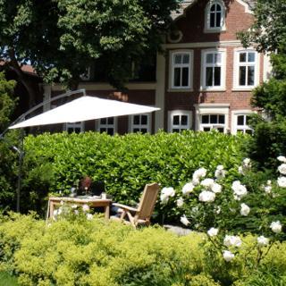 Auf der Wildblumenwiese - Dänschendorf