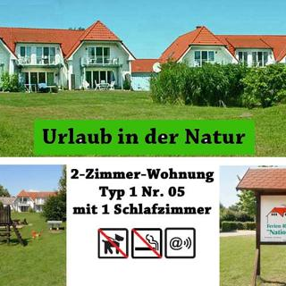 Ferienresidenz am Nationalpark, 2-Zimmer-Fewo Nr. 5 - Gingst