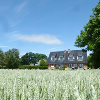 Ferienhaus Helen - Morsum