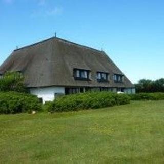 """Haus """"Pamir"""", Wohnung 16 unter Reet - Wenningstedt"""