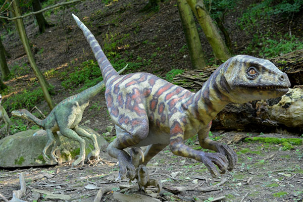 Dino-Park für Kinder auf Rügen