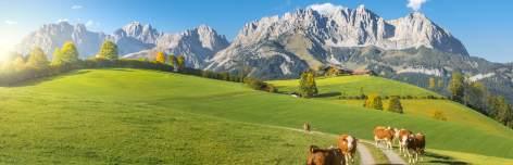 Ferienwohnung für Ihren Urlaub in Österreich
