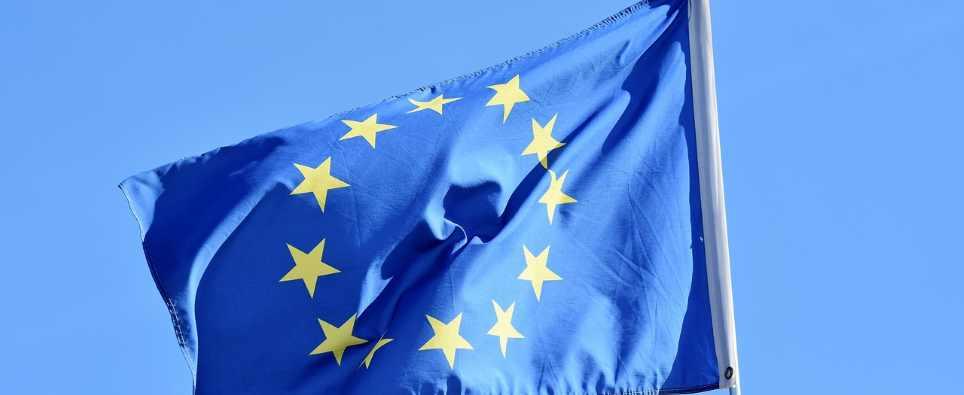 Einreisebestimmungen für den Hund in EU-Ländern
