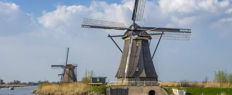 Beliebte Reiseziele mit Hund: Holland