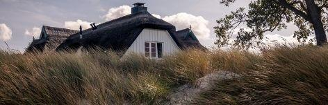 Ferienwohnungen auf Fischland-Darß-Zingst