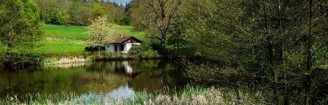 Ferienwohnungen im Thüringer Wald