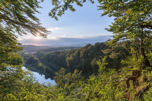 Ausblick im Harz