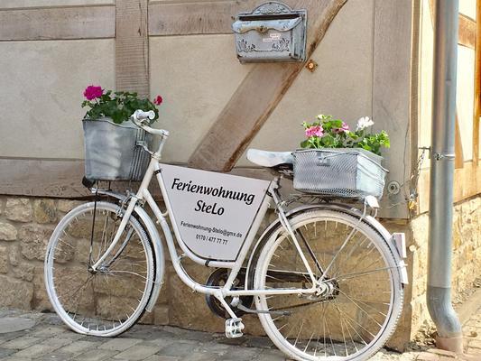Ferienwohnung-Stelo 90 m2  - Ilsenburg