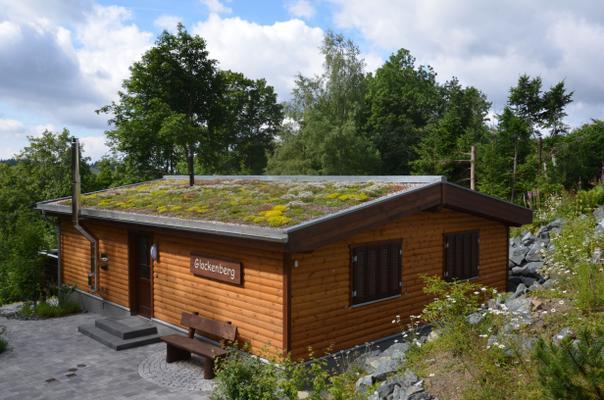 5-Sterne-Ferienhaus mit WLAN, Kamin, Sauna - Haus Glockenberg - - St. Andreasberg