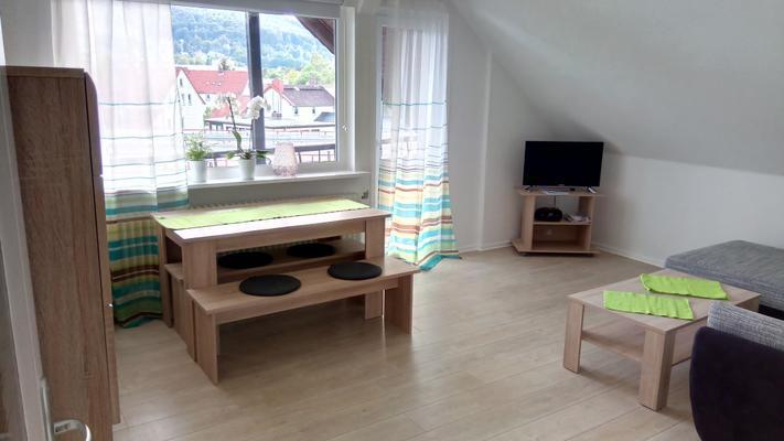 Fewo Torfhaus-Blick - Bad Harzburg