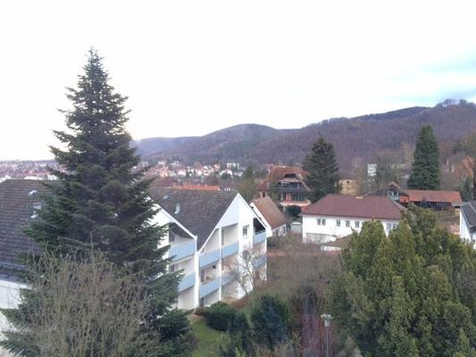 Studio-Apartment am Breitenberg - Bad Harzburg