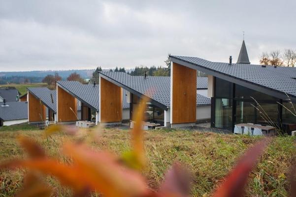 Luxus Villa Winterberg - Winterberg