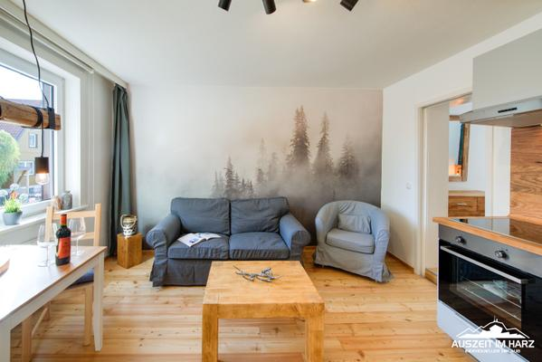 Auszeit-im-Harz Haus 4 Wohnung 1 - Braunlage