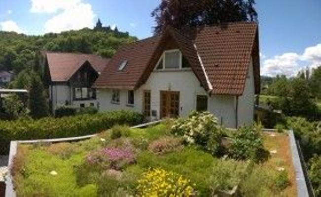 Ferienwohnung am Barockgarten - Wernigerode