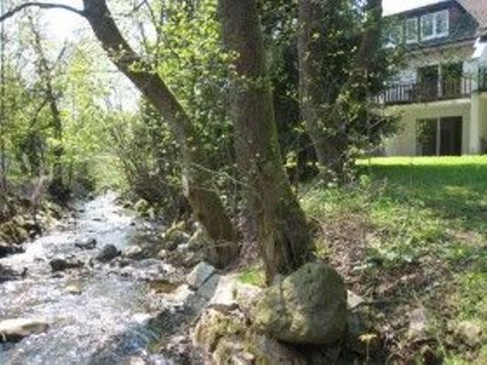 Grün am Wurmberg - Braunlage