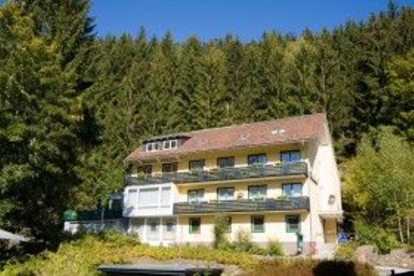 Haus Georgenhöhe, Fewo Stieglitz - Wildemann
