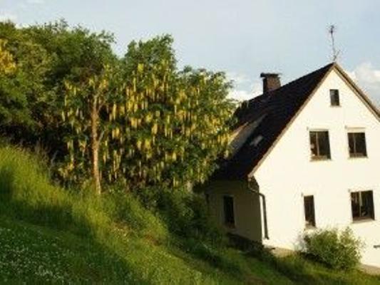 Ferienhaus zum Apfelbäumchen - Hallenberg