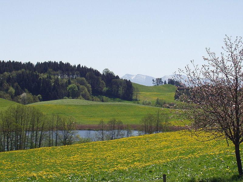 Westallgäu Ferien